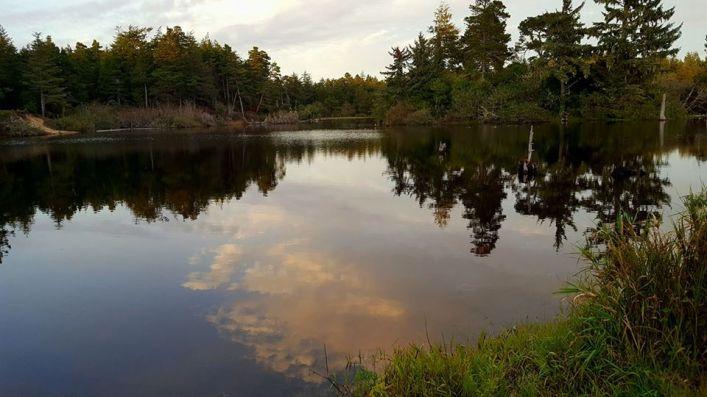 debbie-richardson-reflection